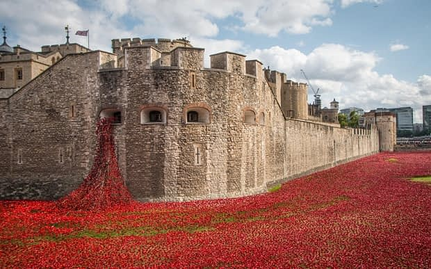 Remembrance Day Poppies at The Tower of London in 2014
